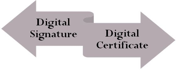 Digital Signature VS Digital Certificate