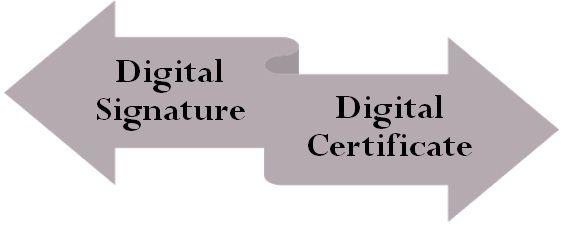 Digital Signature VS Digital Certificate