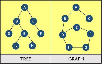 Tree vs graph