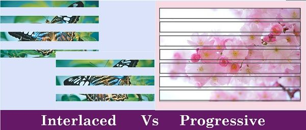 Interlaced Scan Vs Progressive Scan