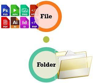File Vs Folder